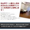 松山賃貸初期費用(敷金・礼金)0のマンション