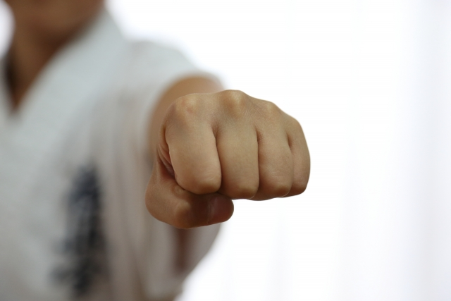「拳」の画像検索結果